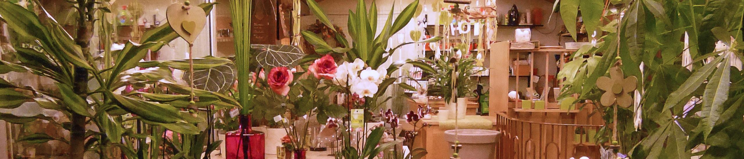 blumen kaufen ihr blumenladen in hungen blumen fischer. Black Bedroom Furniture Sets. Home Design Ideas